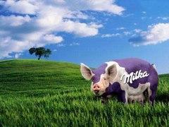Prosie milka