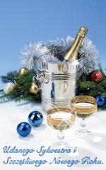Udanego Sylwestra i Szczęśliwego Nowego Roku