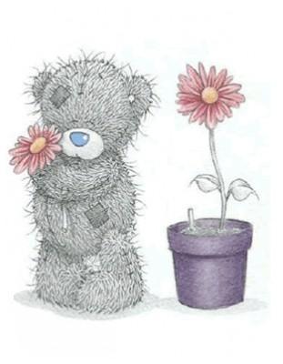 Misiu z kwiatkiem