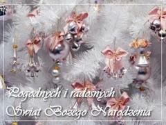Pogodnych i radosnych Świąt...