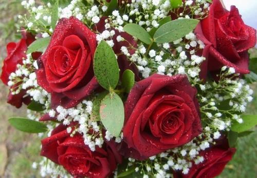 Czerwone róże z przybraniem