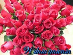 W dniu imienin dużo róż