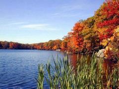 Nad wodą jesienią