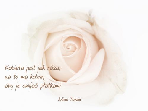 Kobieta jest jak róża...