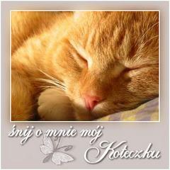 Śnij o mnie mój koteczku