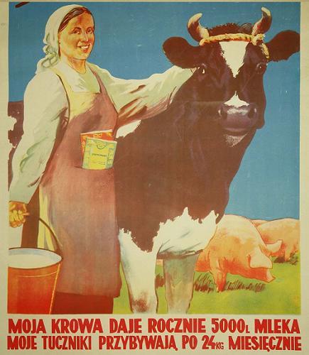Moja krowa daje rocznie...