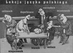 Lekcja języka polskiego